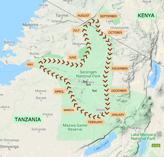 The Great Wildebeest Migration Map, Tanzania