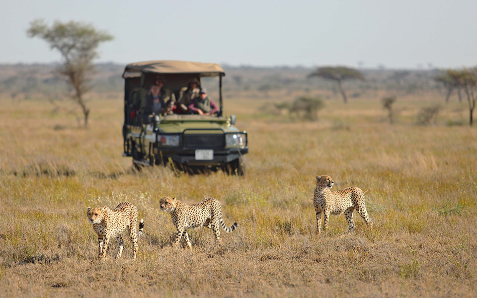 Namiri Plains Activities and Adventures
