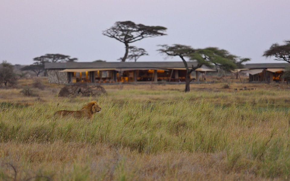 Namiri Plains Lodge